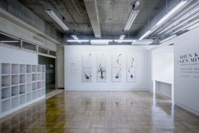 +81 gallery +lab